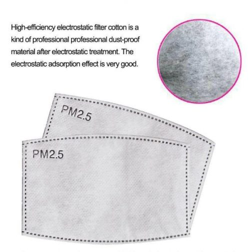 Reusable PM 2.5 Filter Dust-proof Mask