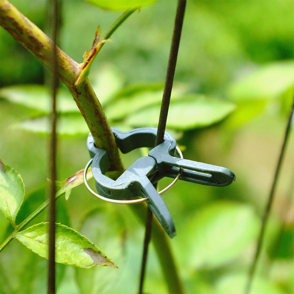 Safe Reusable Garden Flower Lever Loop Gripper Fixed Clips