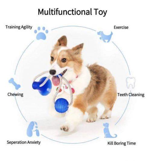 Multifunction Pet Molar Bite Toy