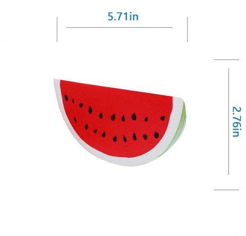 Squishy Watermelon