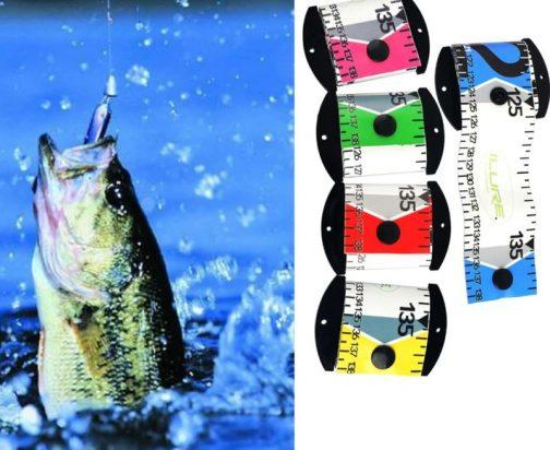 Fish Measuring Ruler