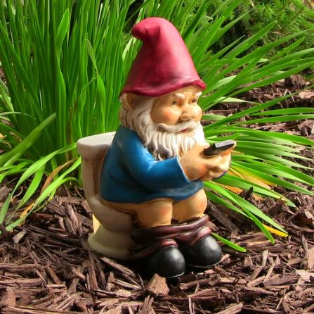 Cody the Gnome Reading Phone on the Throne