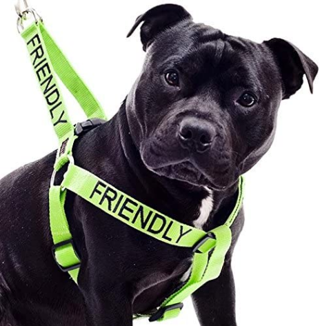 Dexil Limited Friendly Green Color Coded L-XL Non Pull Dog Harness (Known As Friendly) Prevents Accidents by Warning Others of Your Dog in Advance