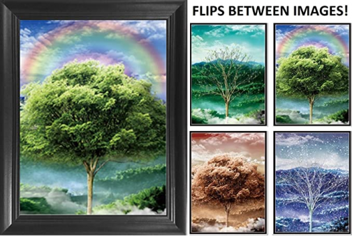 Four Seasons Tree 3D Poster Wall Art Decor Framed Print | 14.5x18.5 | Lenticular Posters & Pictures | Memorabilia Gifts for Guys & Girls Bedroom | Beautiful Nature Scene of Changing Spring Colors