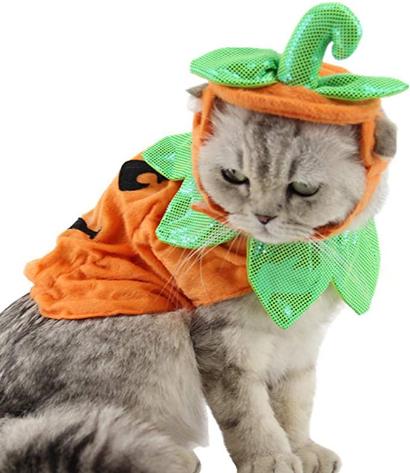 POPETPOP Cat Pumpkin Costume-Halloween Cat Costume Suits Clothes Hatdress Headbands Festival Pumpkin Costumes for Dogs Cats