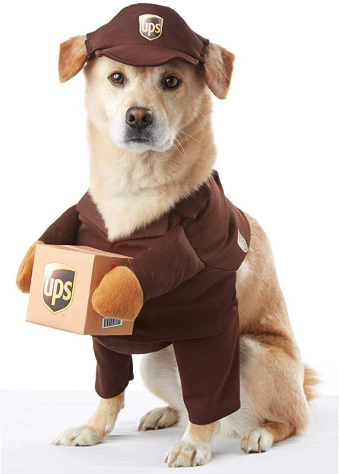 California Costumes Pet Ups Pal Dog Costume Costume