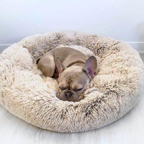 DeepSleep Calming Bed™